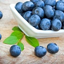 The Flavor Apprentice - Blueberry Wild